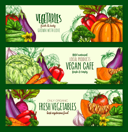 Vegetables harvest vegan cafe vector banners set Ilustracja