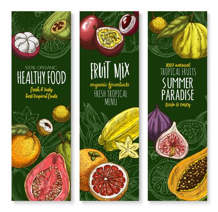 Vectorbanners die voor exotisch vers fruitmenu worden geplaatst Stock Illustratie