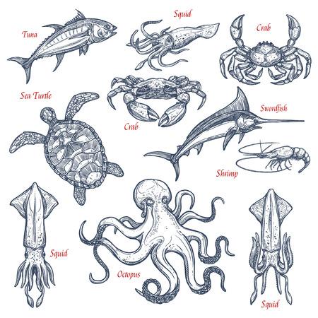 Bosquejo de animales marinos aislados conjunto de pescados y mariscos