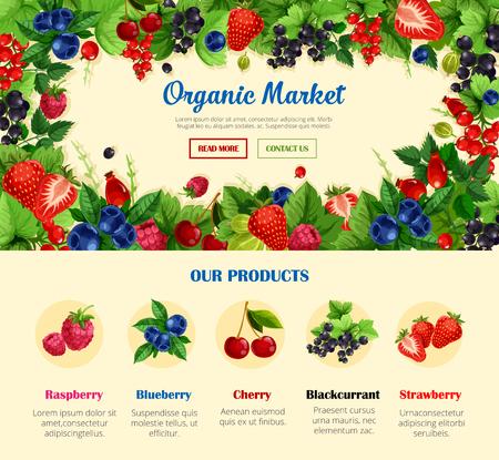 果物や野生のベリー、有機食品バナー テンプレート