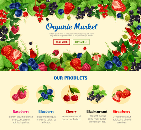 Fruit and wild berry, organic food banner template Çizim
