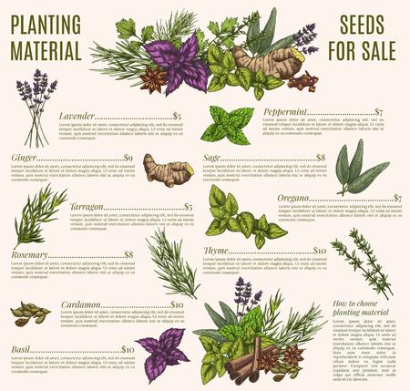 Kruiden en specerijen poster sjabloon voor biologische winkel ontwerp Stock Illustratie