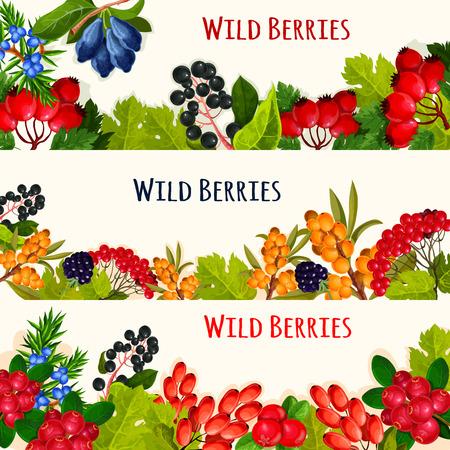 음식 디자인을위한 야생 베리 배너 및 과일 테두리