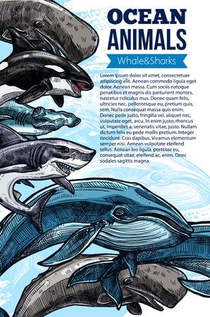 Walvis en haai oceaan dier schets poster