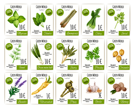Herb and spices tag or price label set design Zdjęcie Seryjne - 81633846