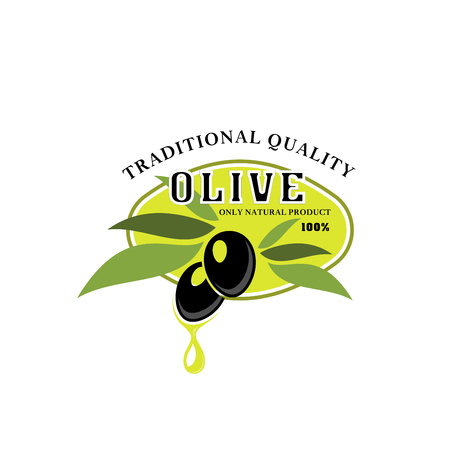 Olives vector icon for olive oil product label Çizim
