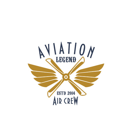 Aviation pilot legend vector icon of airplane