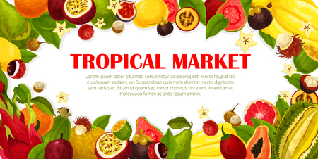 Exotic fruits poster for tropical farm market. Vector design carambola, maracuya and durian or papaya, banana and kiwi or lychee and rambutan, Fresh juicy dragon fruit, mangosteen and guava or orange