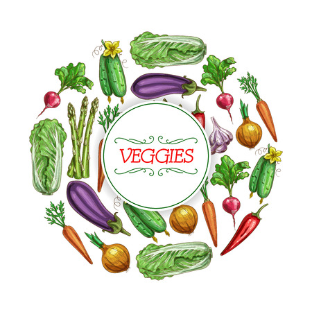 Vegetables or veggies food vector sketch poster