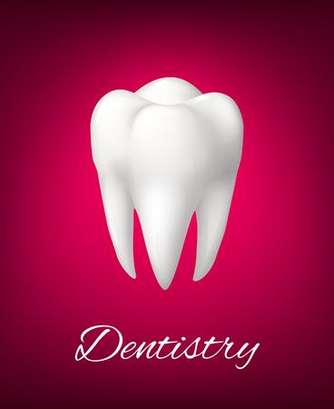 치과 포스터에 대한 벡터 3D 하얀 치아