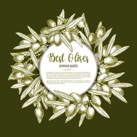 spanish food: Green olive wreath sketch poster design Illustration