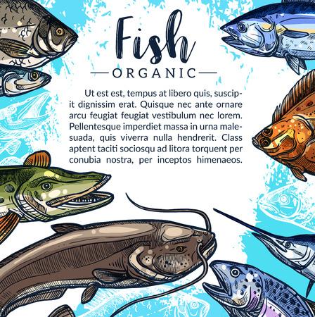 Vector poster van visvangst voor vismarkt