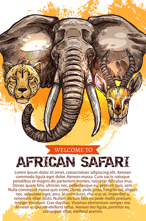 アフリカのサファリ狩猟シーズン クラブ ベクトル ポスター  イラスト・ベクター素材