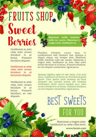 열매 벡터 농장 포스터 과일 포스터 일러스트
