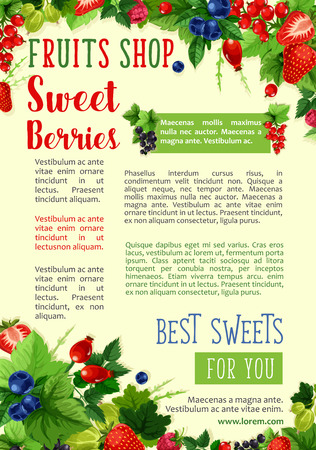 Berries vector poster for farm fruits shop
