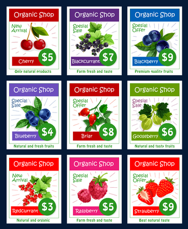 Berries and sweet garden fruits vector price cards