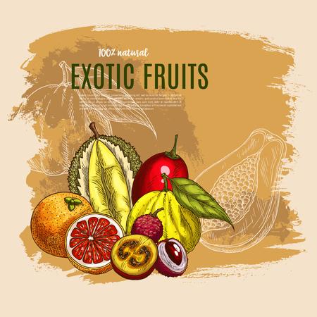 Vector exotische durian, mango, papaja vruchten poster