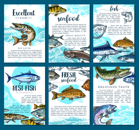Vector posters for fresh fish seafood market