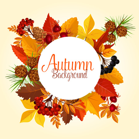 Autumn vector poster of leaf fall and forest berry Çizim