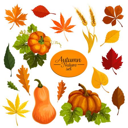 Herfst vector iconen van bladval en oogst Stock Illustratie