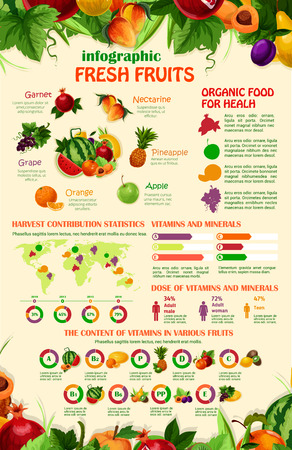 A Vector infographics template of exotic garden fruits illustration.