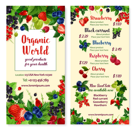 Vector price menu for berries and garden fruits