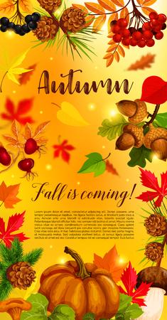 かぼちゃのバナーと落ちた紅葉します。
