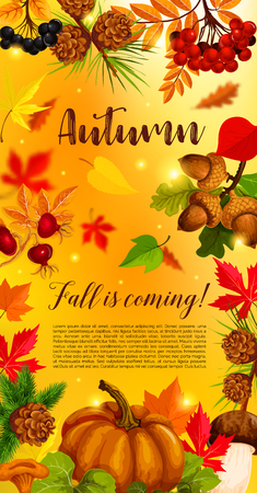 Autumn banner with pumpkin and fallen leaves