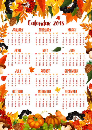 Autumn calendar 2018 template poster of falling maple, oak, aspen and rowan tree leaf with acorn, amanita or cep mushrooms and rowanberry, pumpkin or rowan berry harvest, fir and pine cones Illustration