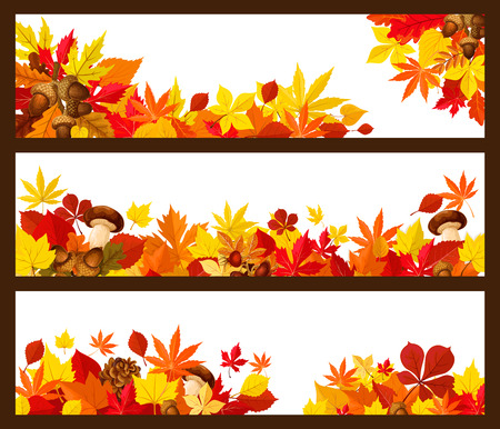 Autumn leaf border of fall season banner. Yellow maple leaves and orange foliage of forest tree, acorn branch, mushroom, briar fruit and pine cone poster with copy space for greeting card design Çizim