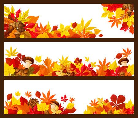 Herbstblattgrenze der Herbstsaisonfahne. Gelbe Ahornblätter und orange Laub des Waldbaums, der Eichelniederlassung, des Pilzes, der Briarfrucht und des Kiefernkegelplakats mit Kopienraum für Grußkartendesign Standard-Bild - 83687867