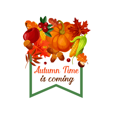 Autumn Time is coming poster of pumpkin, corn or cherry berry harvest, maple leaf or poplar and birch foliage, oak acorn and rowanberry. Vector design template of seasonal autumn holiday greeting card