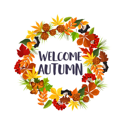 Welcome Autumn poster of fall maple leaf, oak acorn or rowan berry and pine or fir tree cones round wreath. Vector seasonal autumn design for holiday greeting wish of poplar, aspen or elm tree leaves