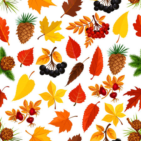 Autumn seamless pattern of fall season nature background. Yellow maple leaf, orange foliage of forest tree, rowanberry and briar berry branch, pine and fir cone pattern for autumn season design