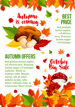 Autumn sale vector poster leaf and mushroom fall