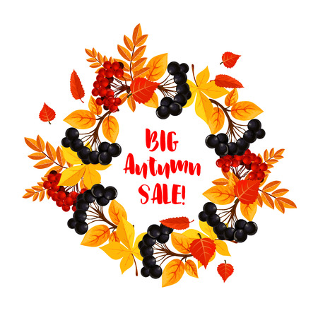 Autumn sale vector poster of leaf fall or berry