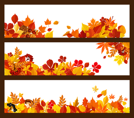 秋の葉、きのこ、ベリー バナー枠  イラスト・ベクター素材