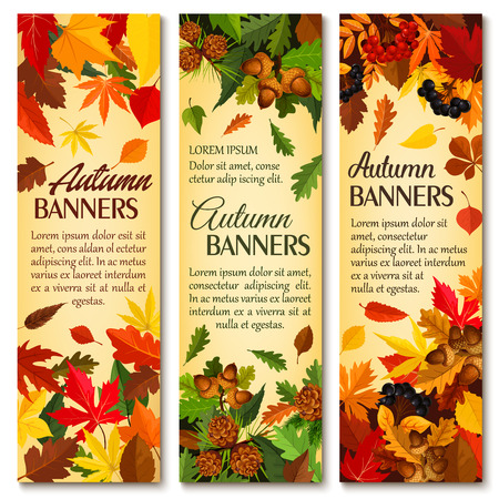 Autumn nature season banner set with fallen leaves Imagens - 83719622
