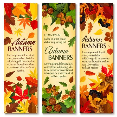 Banner de temporada de naturaleza otoño con hojas caídas