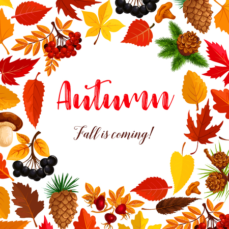 Autumn vector poster of leaf fall or forest berry