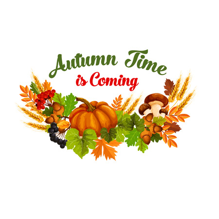 Autumn time vector poster of fall harvest Çizim