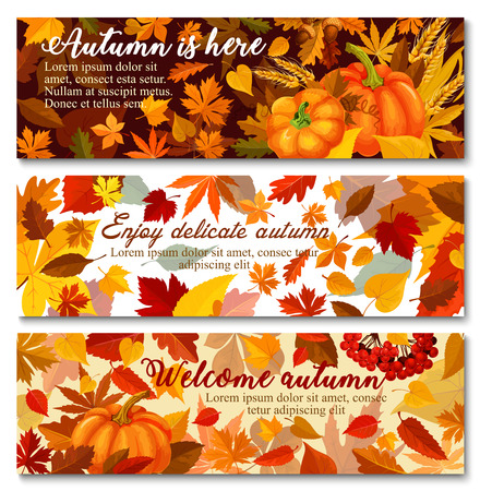 Autumn pumpkin with fallen leaf banner set design