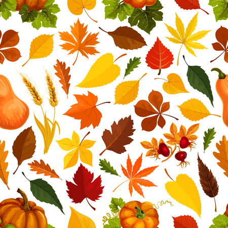 Autumn leaves vector seamless pattern Illustration