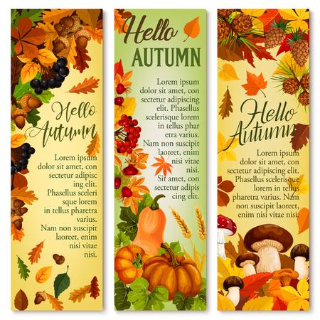 Herfst vallende blad September bos vector banner