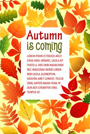 Herfst herfstbladeren vector poster sjabloon Stock Illustratie
