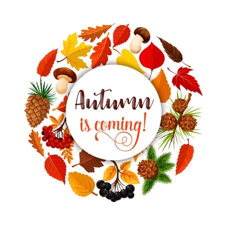 Herbstblatt Blatt für Herbst Natur Saison Design Standard-Bild - 83719822