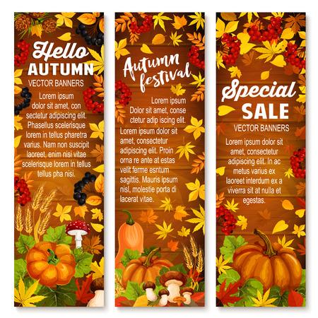 木材の背景の秋の野菜、葉バナー