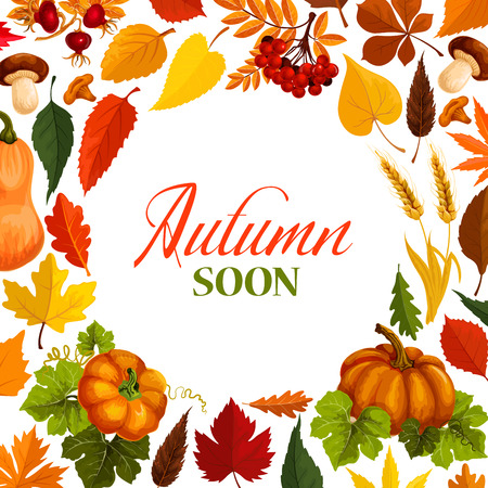 Autumn poster with frame of fall season nature Imagens - 83853308