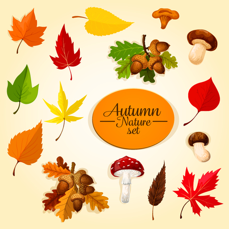 Autumn season icon set with leaf and mushroom Ilustração