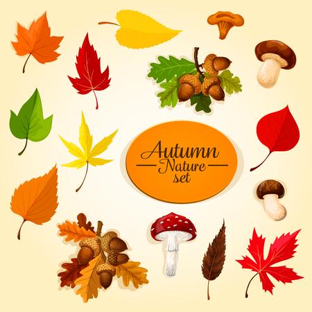 Autumn season icon set with leaf and mushroom Illustration